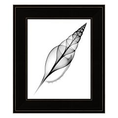 Tibia, Martin's X-Ray Framed Wall Art