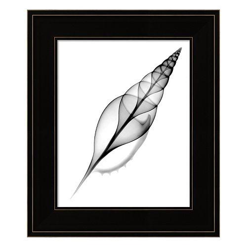 Tibia, Martin's X-Ray Framed Wall Art