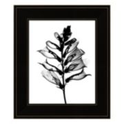Foxglove X-Ray Framed Wall Art