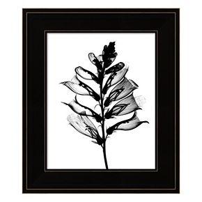 Foxglove X-Ray Framed Wall Art