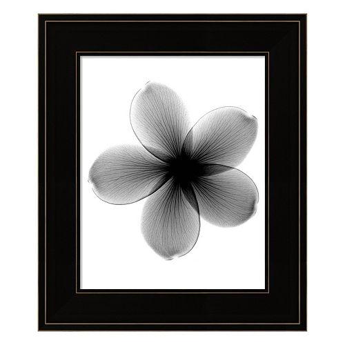 Plumeria X-Ray Framed Wall Art