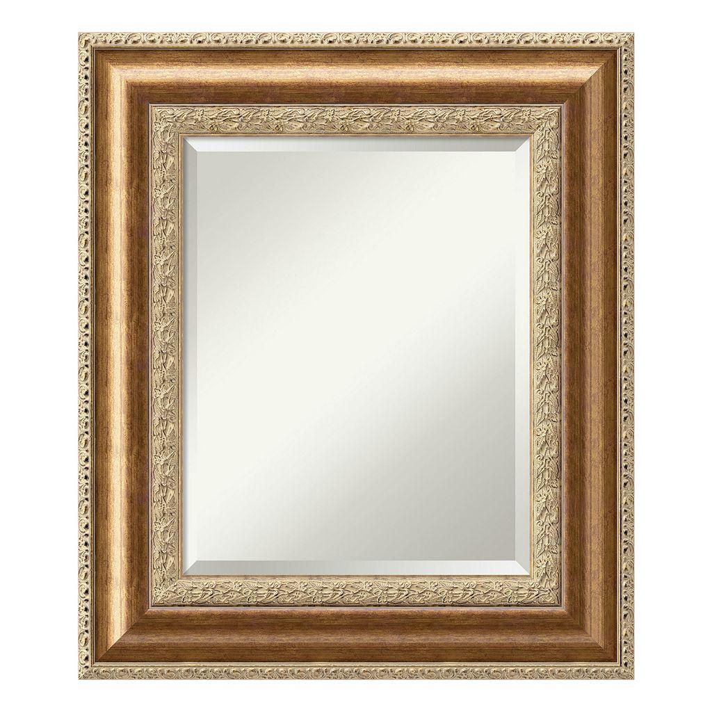 Amanti Art Bronze Finish Wall Mirror