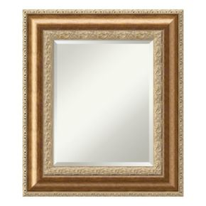 Amanti Art Bronze Finish Wall Mirror