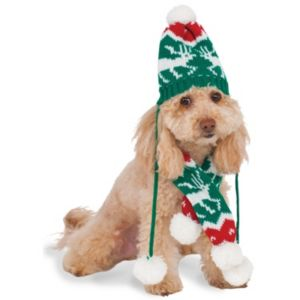 Pet Christmas Knit Pom Pom Hat & Scarf Costume