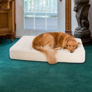 Paus Deluxe Quilted Orthopedic Pet Bed