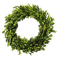 Lloyd & Hannah 20 in Artificial Boxwood Preserved Wreath