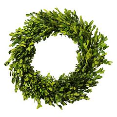 Lloyd & Hannah 20-in. Artificial Boxwood Preserved Wreath