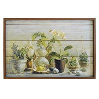 New View Greenhouse Framed Wall Art