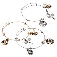 Bee, Ladybug, Dragonfly & Sun Charm Two Tone Bangle Bracelet Set
