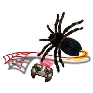 Fantasma Magic Web Attack Tarantula