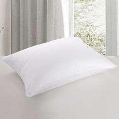Cotton Loft 500 Thread Count Core Pillow