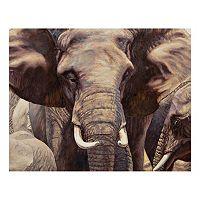 Elephant Approach Canvas Wall Art