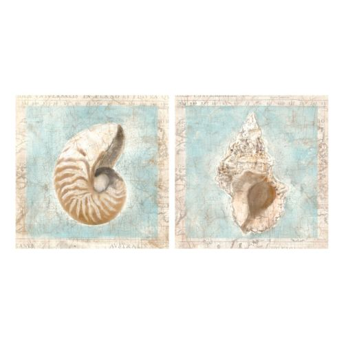 Shells I & II Canvas Wall Art 2-piece Set