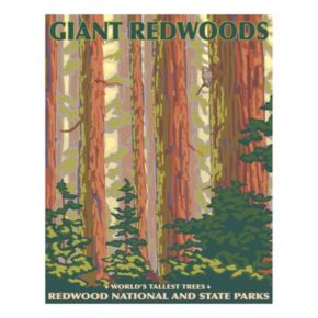 """Giant Redwoods"" Canvas Wall Art"