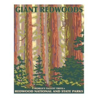 """""""Giant Redwoods"""" Canvas Wall Art"""