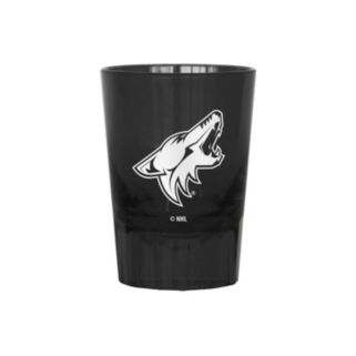 Boelter Arizona Coyotes 4-Pack Shot Glass Set