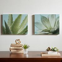 Urban Habitat Aloe Canvas Wall Art 2 pc Set