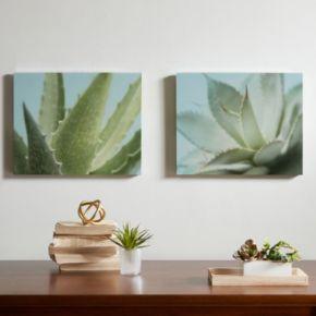 Urban Habitat Aloe Canvas Wall Art 2-piece Set