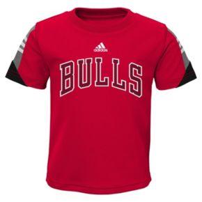 Toddler adidas Chicago Bulls Possession Tee & Shorts Set