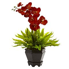 nearly natural Birds Nest Fern & Orchid Silk Artificial Floral Arrangement