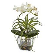 nearly natural Orchid and Succulent Mixed Artificial Floral Arrangement