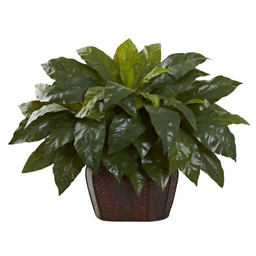 nearly natural  27-in. Giant Bird's Nest Fern Artificial Plant