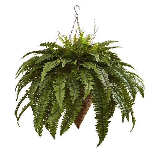 nearly natural Artificial 26-in. Giant Boston Fern