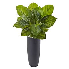 nearly natural Artificial Large Leaf Philodendron Floor Plant