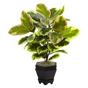 nearly natural Artificial 22-in. Variegated Rubber Leaf Plant