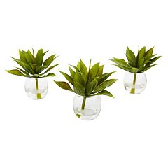 nearly natural Artificial Mini Agave Succulent Trio 3-piece Set