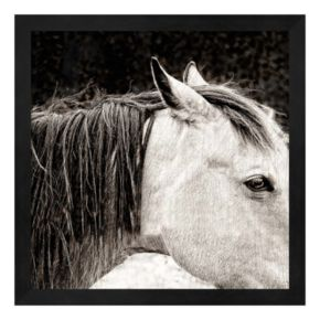 Scratched Horse Framed Wall Art