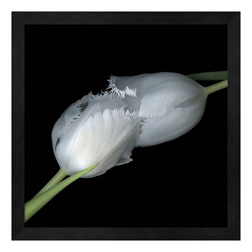 A Kiss To Build A Dream On Tulips Framed Wall Art