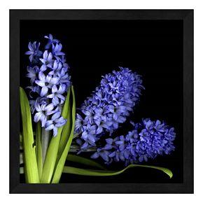 Hyacinth 3 Framed Wall Art