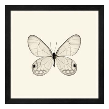 Butterfly I Framed Wall Art