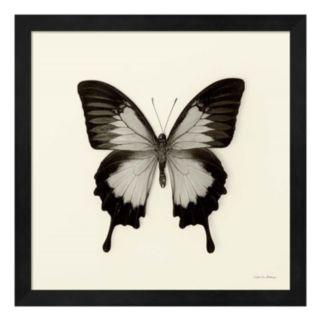 Butterfly III Framed Wall Art