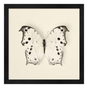 Butterfly IV Framed Wall Art
