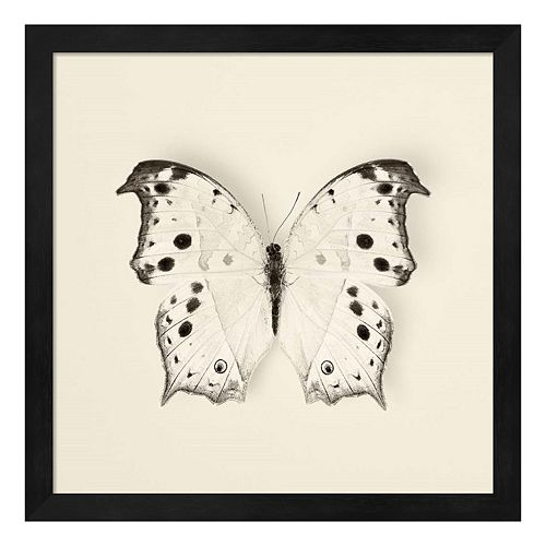 Butterfly IV Framed Wall Art