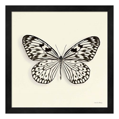 Butterfly V Framed Wall Art