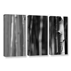 ArtWall A Way Out Canvas Wall Art 3-piece Set