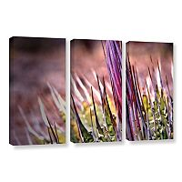 ArtWall Agave Canvas Wall Art 3 pc Set
