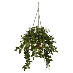 nearly natural Artificial Mixed Stephanotis Hanging Plant
