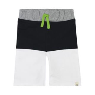 Toddler Boy Burt's Bees Baby French Terry Colorblock Shorts