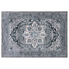 Concord Global Thema Serapi Framed Floral Rug
