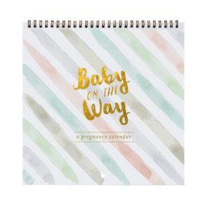 C.R. Gibson Baby on the Way 44-Week Pregnancy Calendar