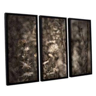 ArtWall ''Dormant'' Framed Wall Art 3-piece Set