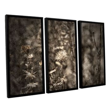 ArtWall ''Dormant'' Framed Wall Art 3-piece Set