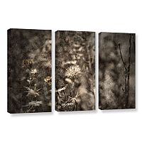 ArtWall Dormant Canvas Wall Art 3-piece Set