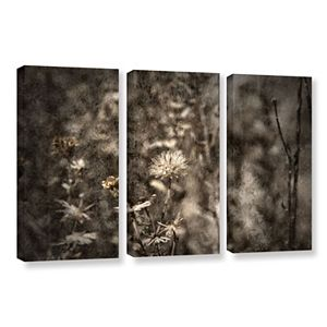 ArtWall Dormant Canvas Wall Art 3-piece Set