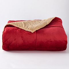 Cuddl Duds Cozy Soft Comforter