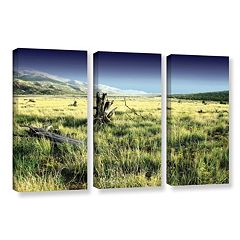 ArtWall Fall Creeps Canvas Wall Art 3 pc Set
